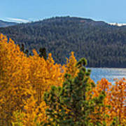Fall Color At Caples Lake Poster