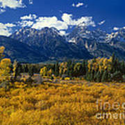 Fall Color Tetons Blacktail Ponds Grand Tetons Nationa Poster