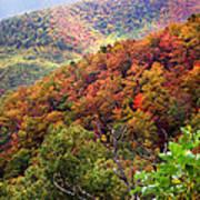 Fall Colors Along The Blueridge Poster