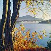 Fall Colors Frame Whiteface Mountain Poster