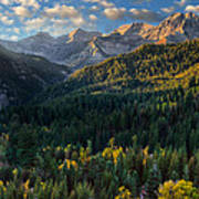 Fall Colors On Mt. Timpanogos Poster