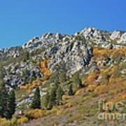 Fall Colors S Lake Tahoe California Poster