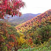 Fall Folage Along The Blueridge Poster