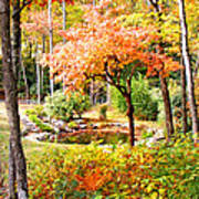 Fall Folage And Pond Poster