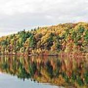 Fall Foliage At Walden Pond Poster