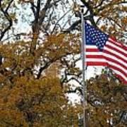Fall In America Poster