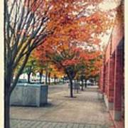 Fall In Downtown Vancouver Washington Poster