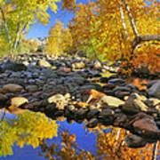 Fall In Oak Creek  Poster