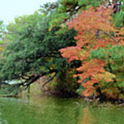 Fall Landscape Around The Lake 5 Poster