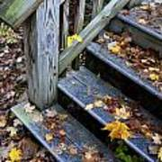 Fall Leaves On Steps Poster