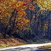 Fall On The Parkway Poster