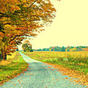 Fall Path Poster