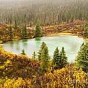 Fall Rain On Wilderness Lake Yukon T Canada Poster
