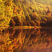 Fall Reflections. Loch Achray. Scotland Poster