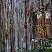Fall Reflections On Weathered Glass Poster