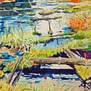 Fall River Scene Poster
