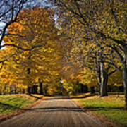 Fall Rural Country Gravel Road Poster