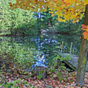 Fall Scene By Pond Poster