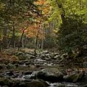 Fall Stream Cades Cove Gsmnp Poster by Paul Herrmann