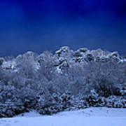 Fallen Angel Of Winter Poster