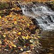 Fallen Leaves At A Waterfall Poster