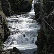 Falling Water Poster