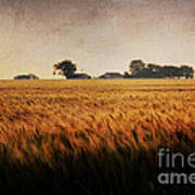 Family Farm Poster