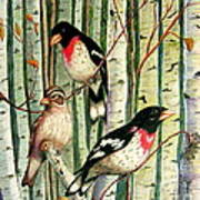 Family Trio Poster