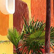 Fan Palm On Patio Poster