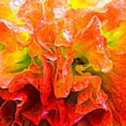 Fantasy Flower 7 Poster