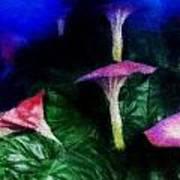 Fantasy Flowers Embossed Hp Poster