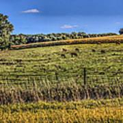 Farm Field Poster
