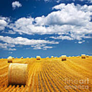 Farm Field With Hay Bales Poster
