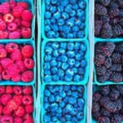 Farm Fresh Berries - Raspberries Blueberries Blackberies Poster