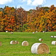 Farm Fresh Hay Poster
