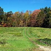 Farm Road In Autumn Poster