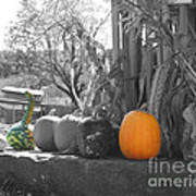 Farm Stand In Autumn Poster