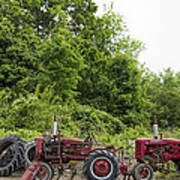 Farmall Tractors All In A Row Poster