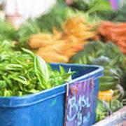 Farmer's Market Basil Poster