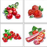Farmers Market Gifts Red Vitamins Poster