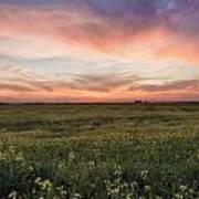 Farmland Sunset 1 Poster
