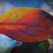 Fauvist Hydrangea Leaf Poster