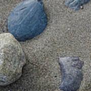 February Rock Garden Poster