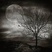 February Tree Poster