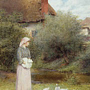 Feeding The Ducks Poster