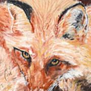 Feeling Foxy Poster
