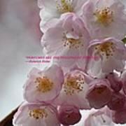 Feelings Of Flowers Poster