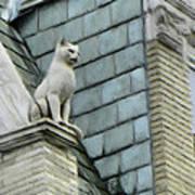 Feline Sentry Poster