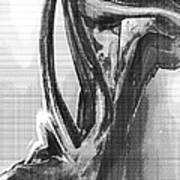 Female Torso 2 Poster