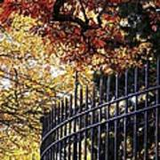 Fence At Woodlawn Cemetery Poster